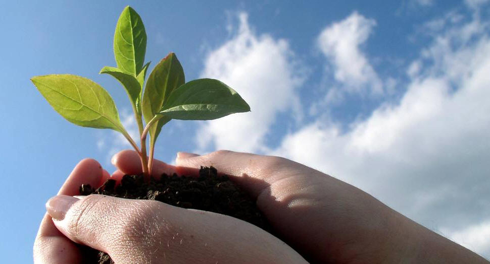 Άρθρο στην «Εφημερίδα των Συντακτών» με τίτλο «Ανάπτυξη. Πώς;»